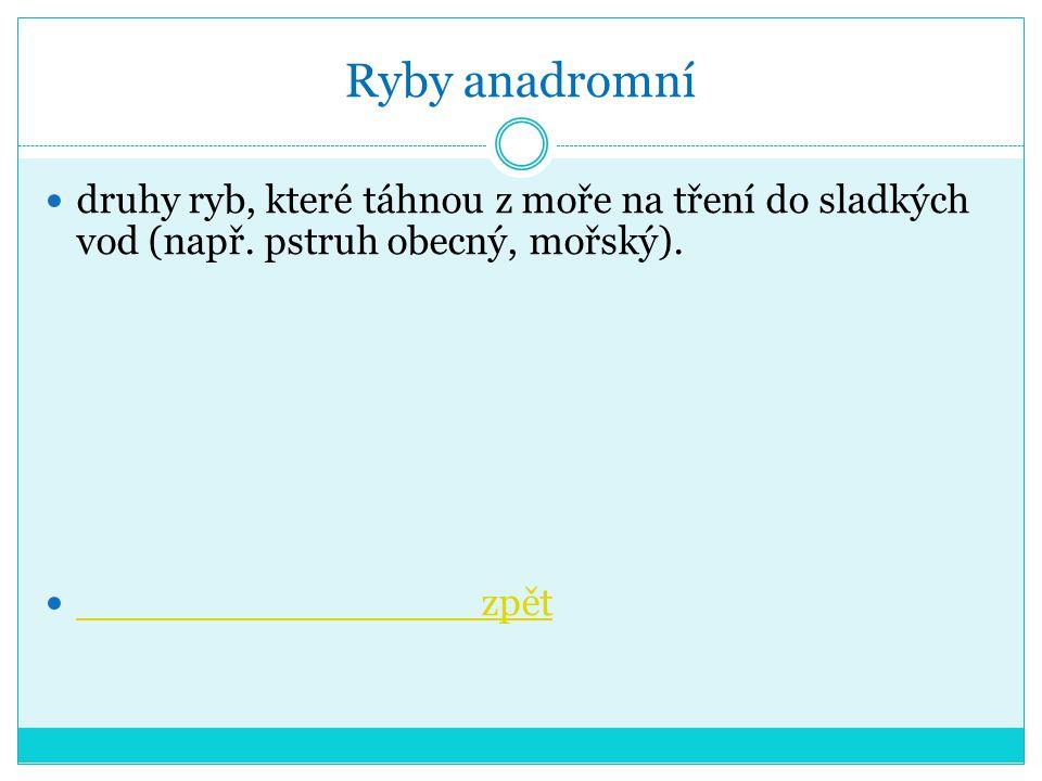 Ryby anadromní druhy ryb, které táhnou z moře na tření do sladkých vod (např.
