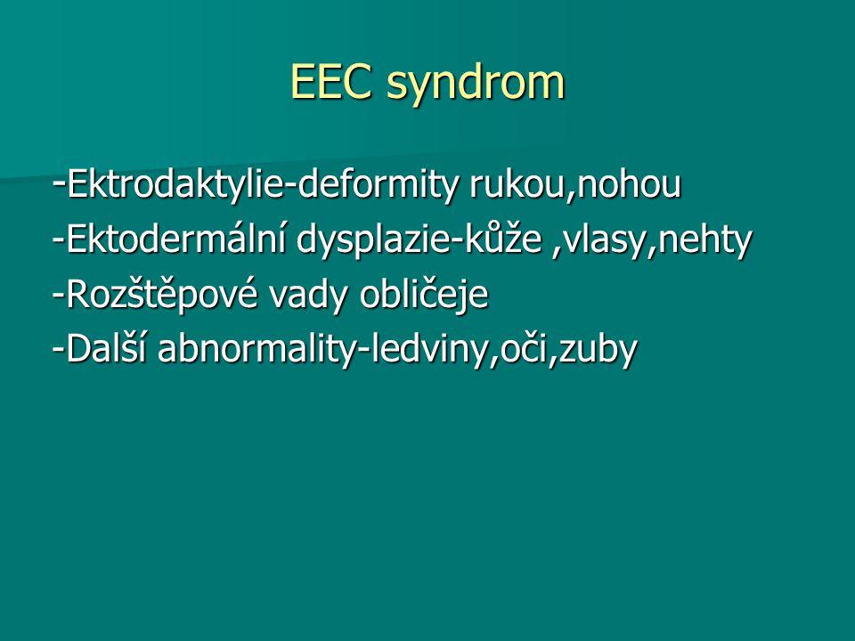 EEC syndrom - Ektrodaktylie-deformity rukou,nohou -Ektodermální dysplazie-kůže,vlasy,nehty -Rozštěpové vady obličeje -Další abnormality-ledviny,oči,zuby