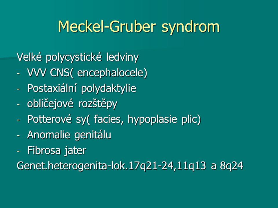 Meckel-Gruber syndrom Velké polycystické ledviny - VVV CNS( encephalocele) - Postaxiální polydaktylie - obličejové rozštěpy - Potterové sy( facies, hy