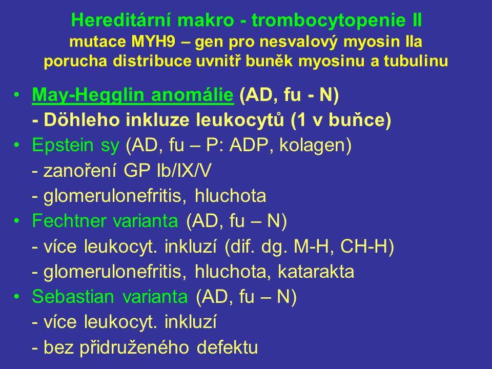 Hereditární makro - trombocytopenie II mutace MYH9 – gen pro nesvalový myosin IIa porucha distribuce uvnitř buněk myosinu a tubulinu May-Hegglin anomá