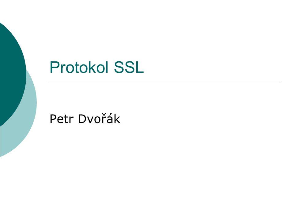 Protokol SSL Petr Dvořák