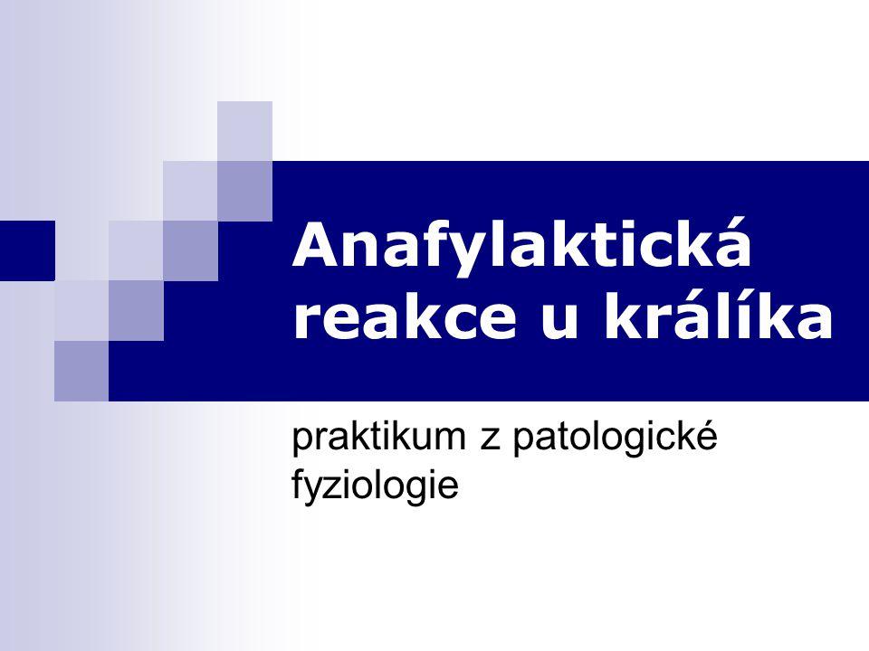 Anafylaktická reakce u králíka praktikum z patologické fyziologie