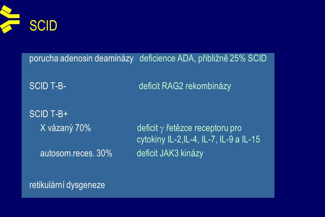 SCID porucha adenosin deaminázy deficience ADA, přibližně 25% SCID SCID T-B- deficit RAG2 rekombinázy SCID T-B+ X vázaný 70% deficit  řetězce receptoru pro cytokiny IL-2,IL-4, IL-7, IL-9 a IL-15 autosom.reces.