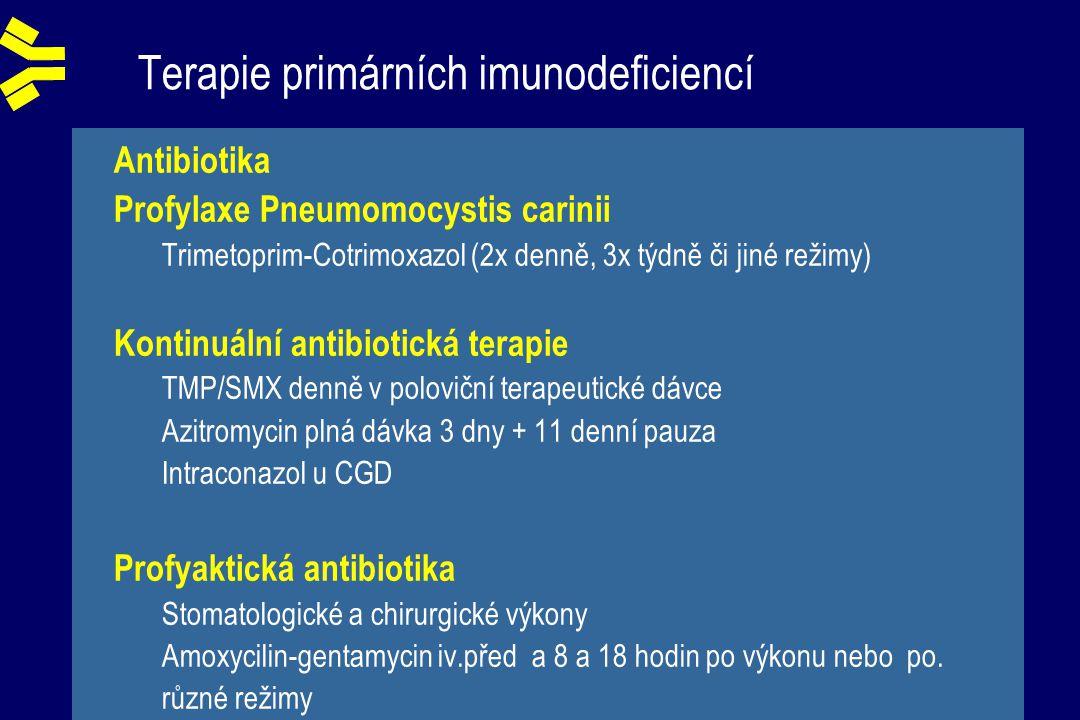 Terapie primárních imunodeficiencí Antibiotika Profylaxe Pneumomocystis carinii Trimetoprim-Cotrimoxazol (2x denně, 3x týdně či jiné režimy) Kontinuální antibiotická terapie TMP/SMX denně v poloviční terapeutické dávce Azitromycin plná dávka 3 dny + 11 denní pauza Intraconazol u CGD Profyaktická antibiotika Stomatologické a chirurgické výkony Amoxycilin-gentamycin iv.před a 8 a 18 hodin po výkonu nebo po.