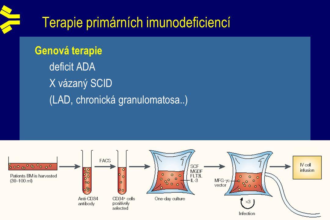 Terapie primárních imunodeficiencí Genová terapie deficit ADA X vázaný SCID (LAD, chronická granulomatosa..)