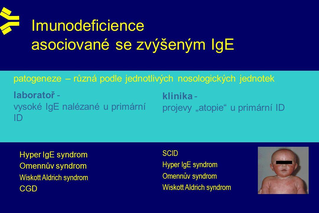"""Imunodeficience asociované se zvýšeným IgE patogeneze – různá podle jednotlivých nosologických jednotek Hyper IgE syndrom Omennův syndrom Wiskott Aldrich syndrom CGD SCID Hyper IgE syndrom Omennův syndrom Wiskott Aldrich syndrom laboratoř - vysoké IgE nalézané u primární ID klinika - projevy """"atopie u primární ID"""