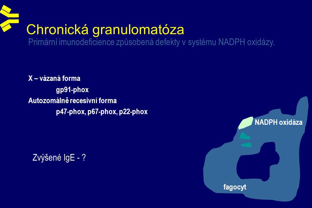 Chronická granulomatóza Primární imunodeficience způsobená defekty v systému NADPH oxidázy.