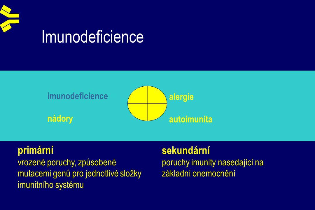 Imunodeficience + + - - imunodeficience nádory alergie autoimunita primární vrozené poruchy, způsobené mutacemi genů pro jednotlivé složky imunitního systému sekundární poruchy imunity nasedající na základní onemocnění