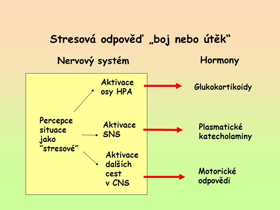 """Stresová odpověď """"boj nebo útěk"""" Nervový systém Hormony Aktivace osy HPA Percepce situace jako """"stresové"""" Aktivace SNS Aktivace dalších cest v CNS Glu"""