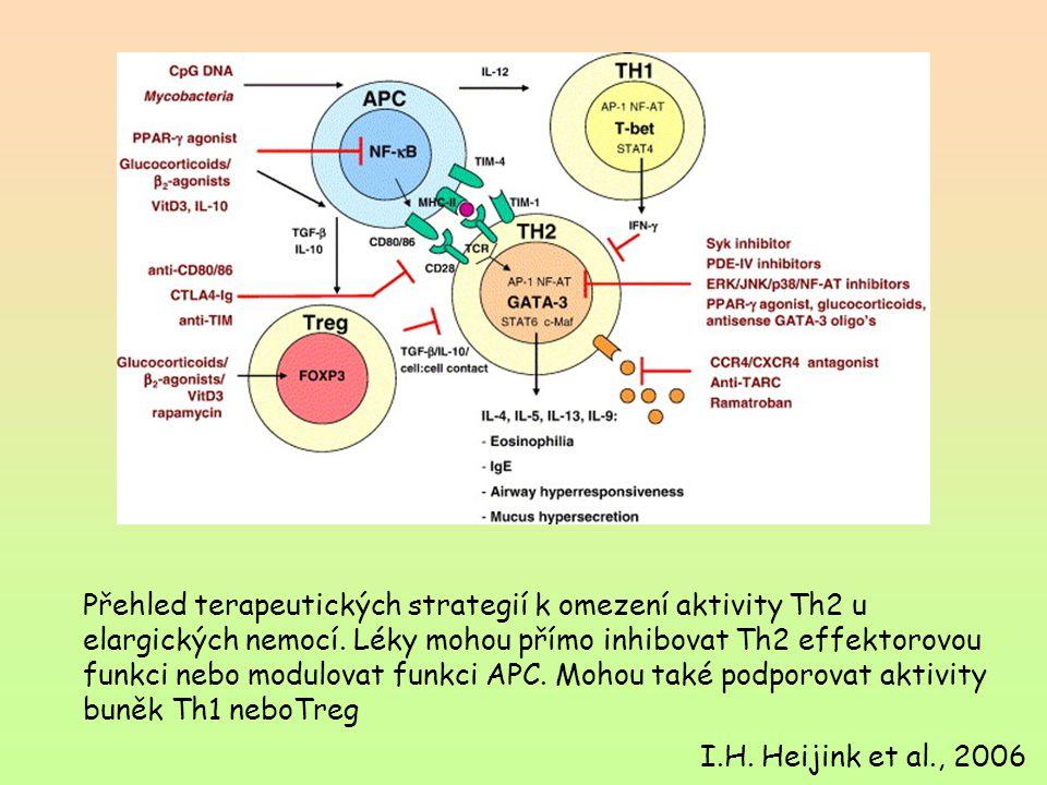 Přehled terapeutických strategií k omezení aktivity Th2 u elargických nemocí. Léky mohou přímo inhibovat Th2 effektorovou funkci nebo modulovat funkci