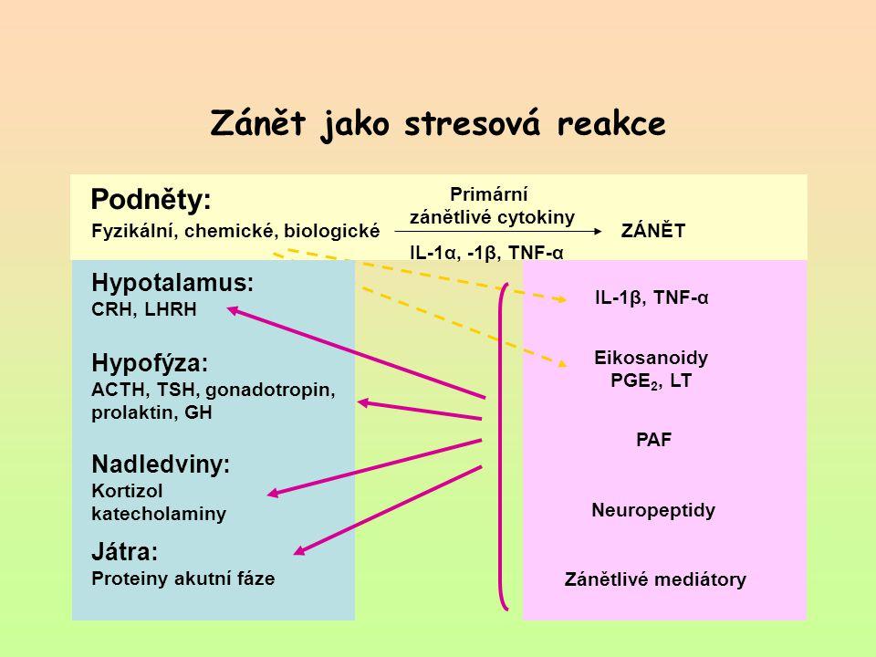 Zánět jako stresová reakce Podněty: Primární zánětlivé cytokiny IL-1α, -1β, TNF-α Fyzikální, chemické, biologickéZÁNĚT IL-1β, TNF-α Eikosanoidy PGE 2,