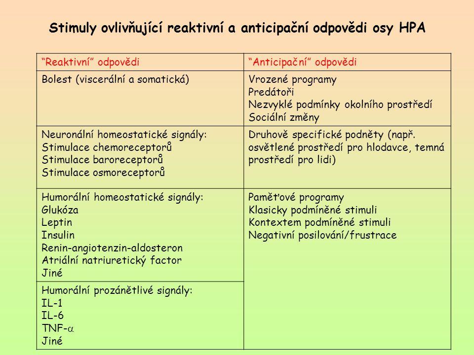 """Stimuly ovlivňující reaktivní a anticipační odpovědi osy HPA """"Reaktivní"""" odpovědi""""Anticipační"""" odpovědi Bolest (viscerální a somatická)Vrozené program"""