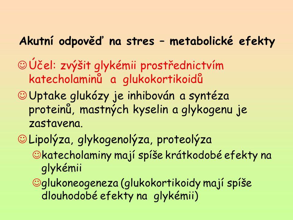 Akutní odpověď na stres – metabolické efekty Účel: zvýšit glykémii prostřednictvím katecholaminů a glukokortikoidů Uptake glukózy je inhibován a synté