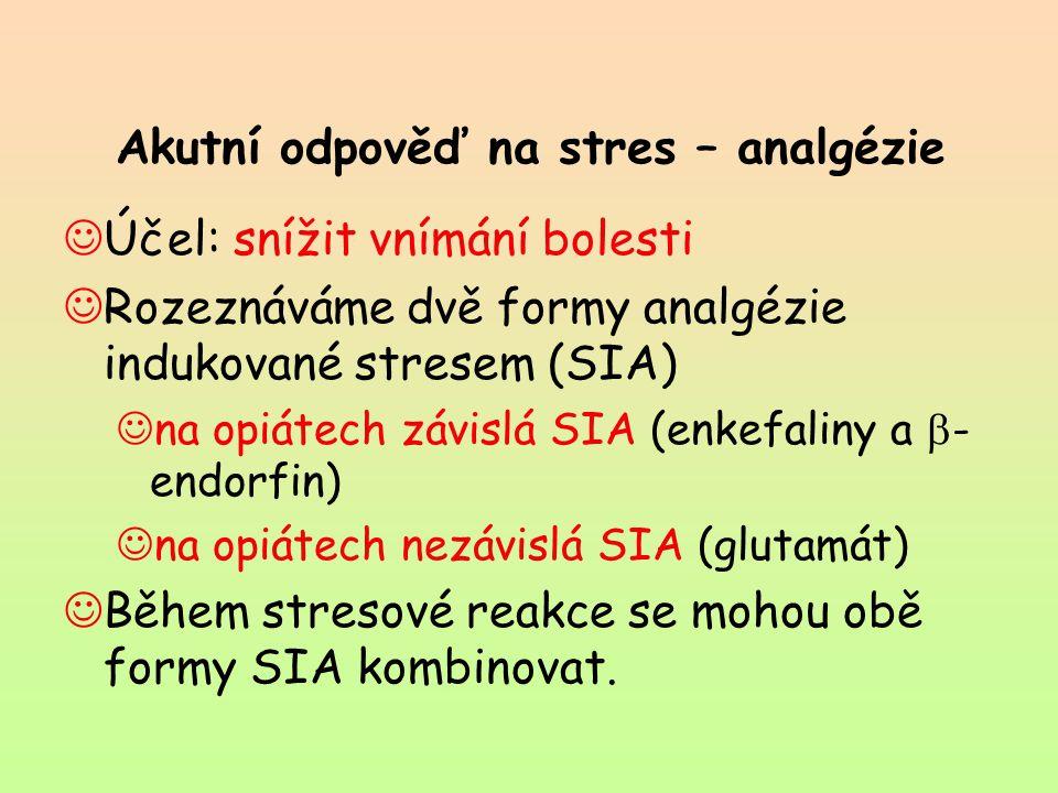 Akutní odpověď na stres – analgézie Účel: snížit vnímání bolesti Rozeznáváme dvě formy analgézie indukované stresem (SIA) na opiátech závislá SIA (enk