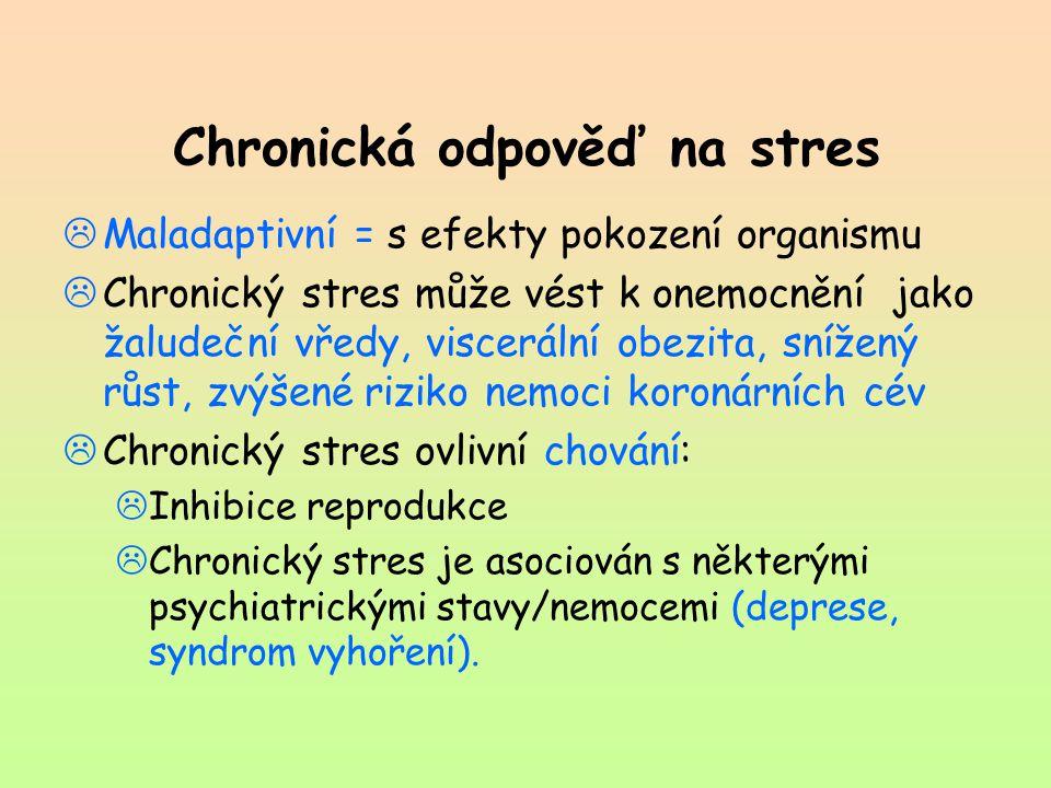 Chronická odpověď na stres  Maladaptivní = s efekty pokození organismu  Chronický stres může vést k onemocnění jako žaludeční vředy, viscerální obez