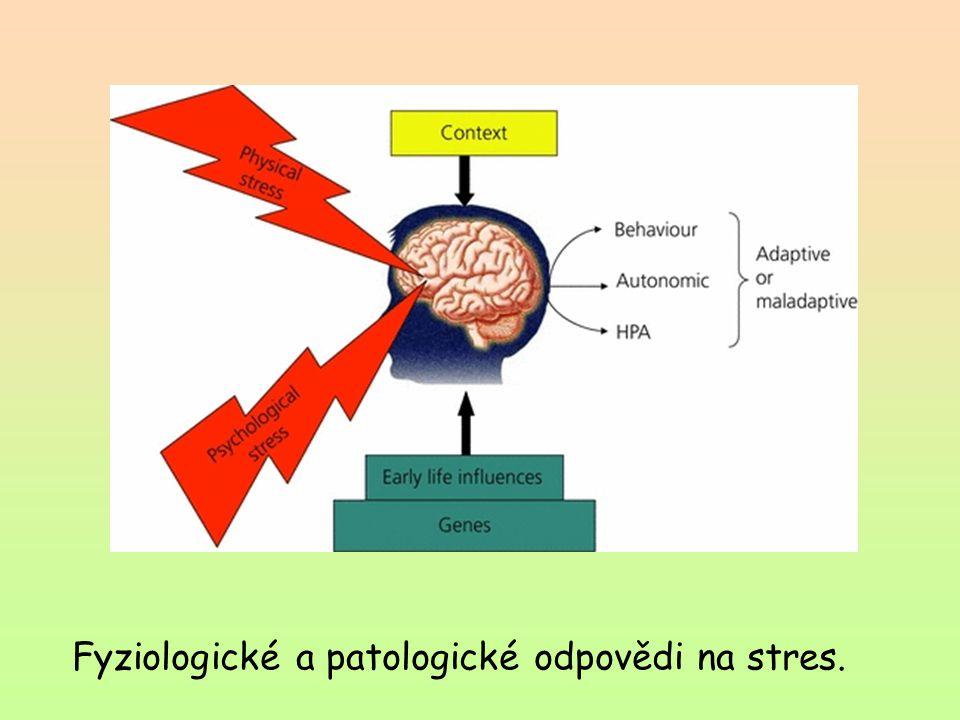 Fyziologické a patologické odpovědi na stres.