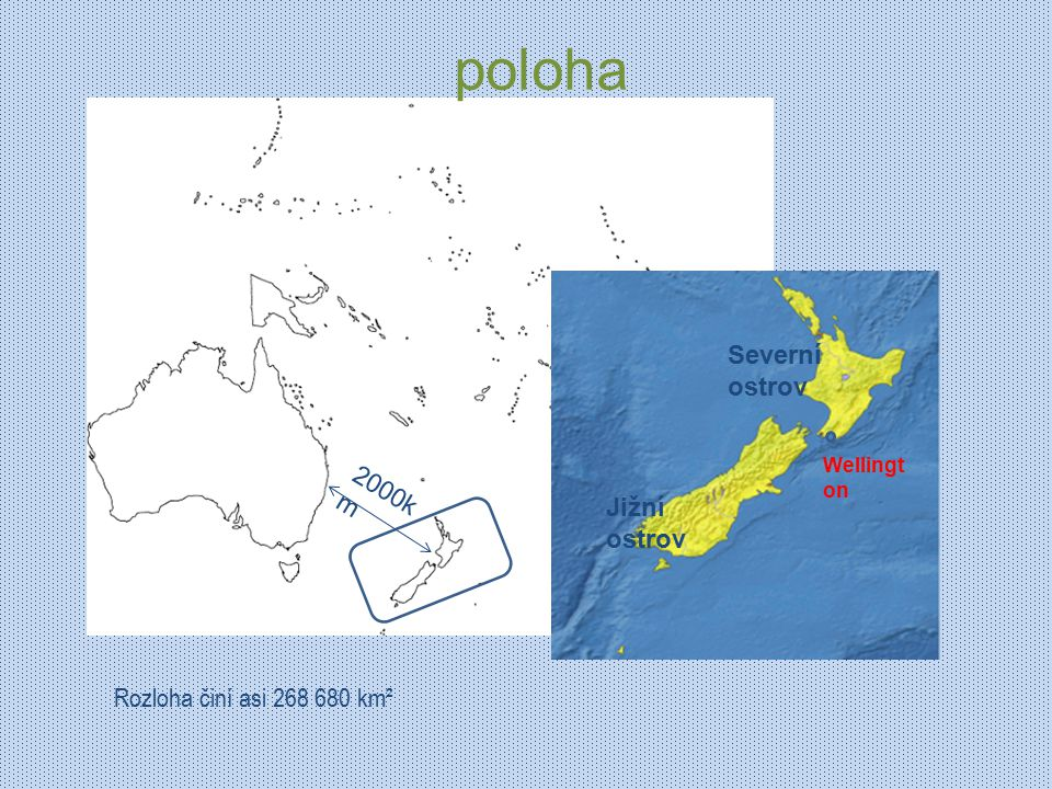 zvířata Na Novém Zélandu nežijí žádní hadi a téměř žádná jedovatá zvířata Nejznámější je pták kiwi typickými opeřenci jsou slípky takahe a papoušci kakapo