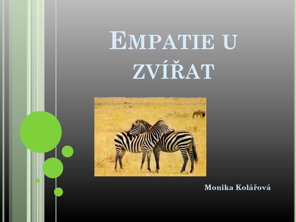 E MPATIE U ZVÍŘAT Monika Kolářová