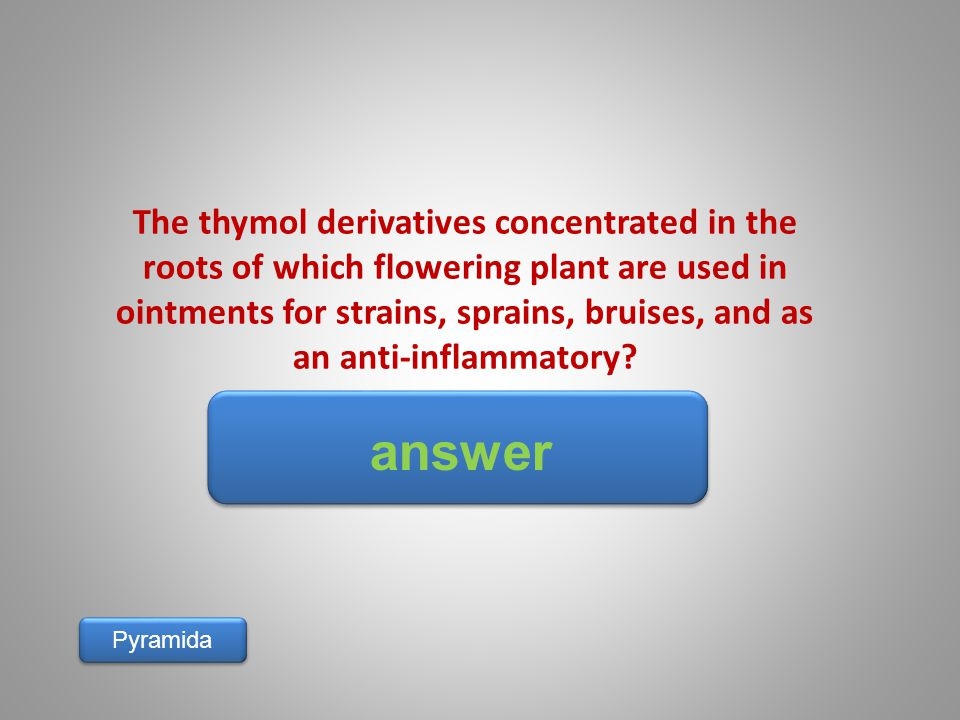 answer Pyramida The thymol derivatives concentrated in the roots of which flowering plant are used in ointments for strains, sprains, bruises, and as an anti-inflammatory