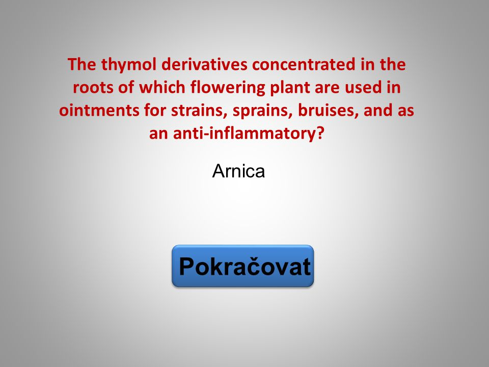 Arnica Pokračovat The thymol derivatives concentrated in the roots of which flowering plant are used in ointments for strains, sprains, bruises, and a
