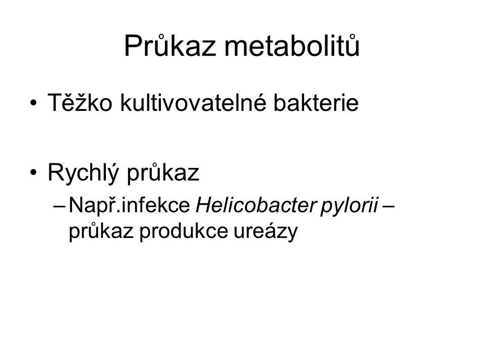 Průkaz metabolitů Těžko kultivovatelné bakterie Rychlý průkaz –Např.infekce Helicobacter pylorii – průkaz produkce ureázy