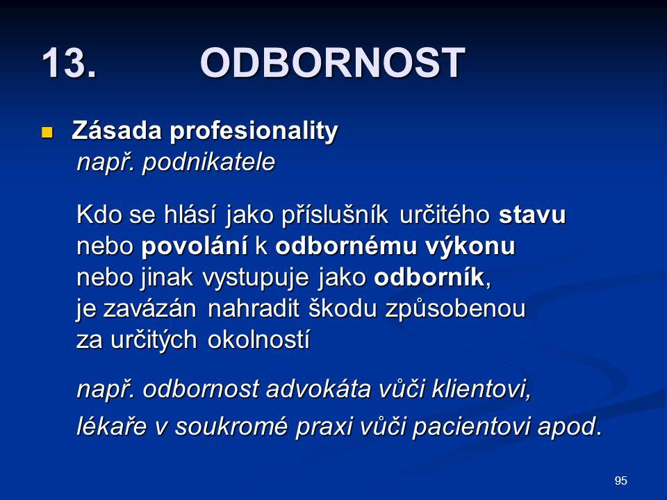95 13.ODBORNOST Zásada profesionality Zásada profesionality např.