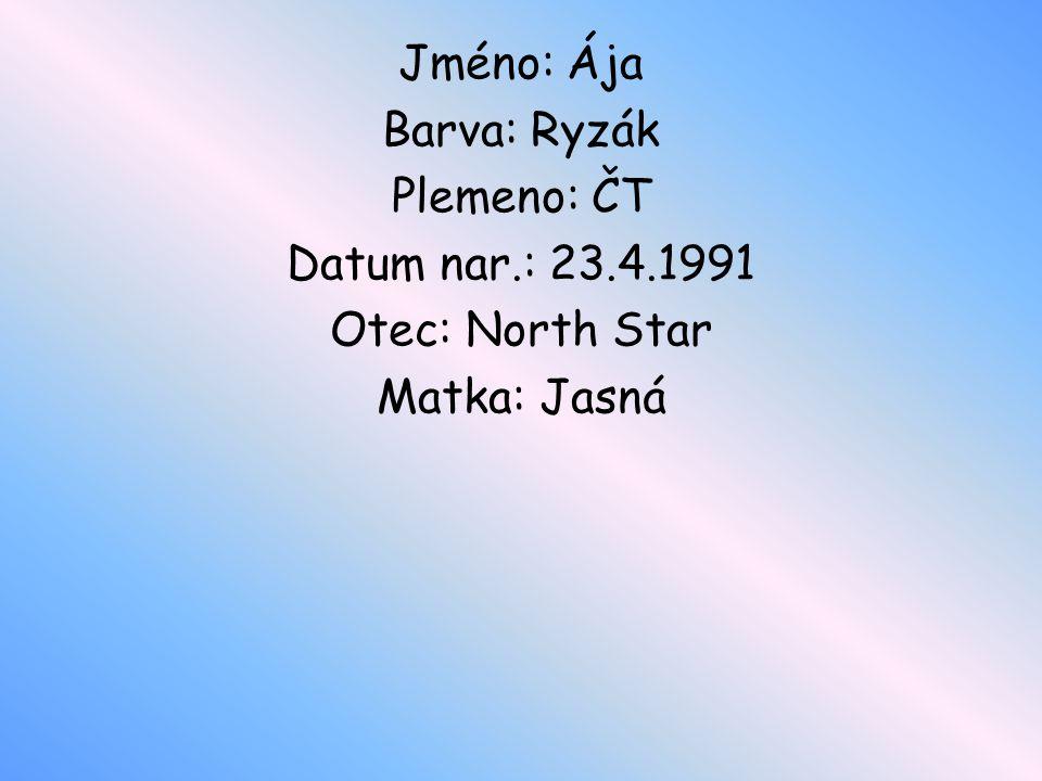 Jméno: Ája Barva: Ryzák Plemeno: ČT Datum nar.: 23.4.1991 Otec: North Star Matka: Jasná