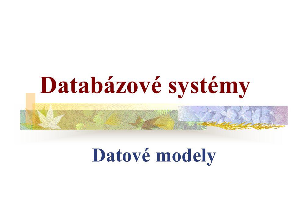 Databázové systémy Datové modely
