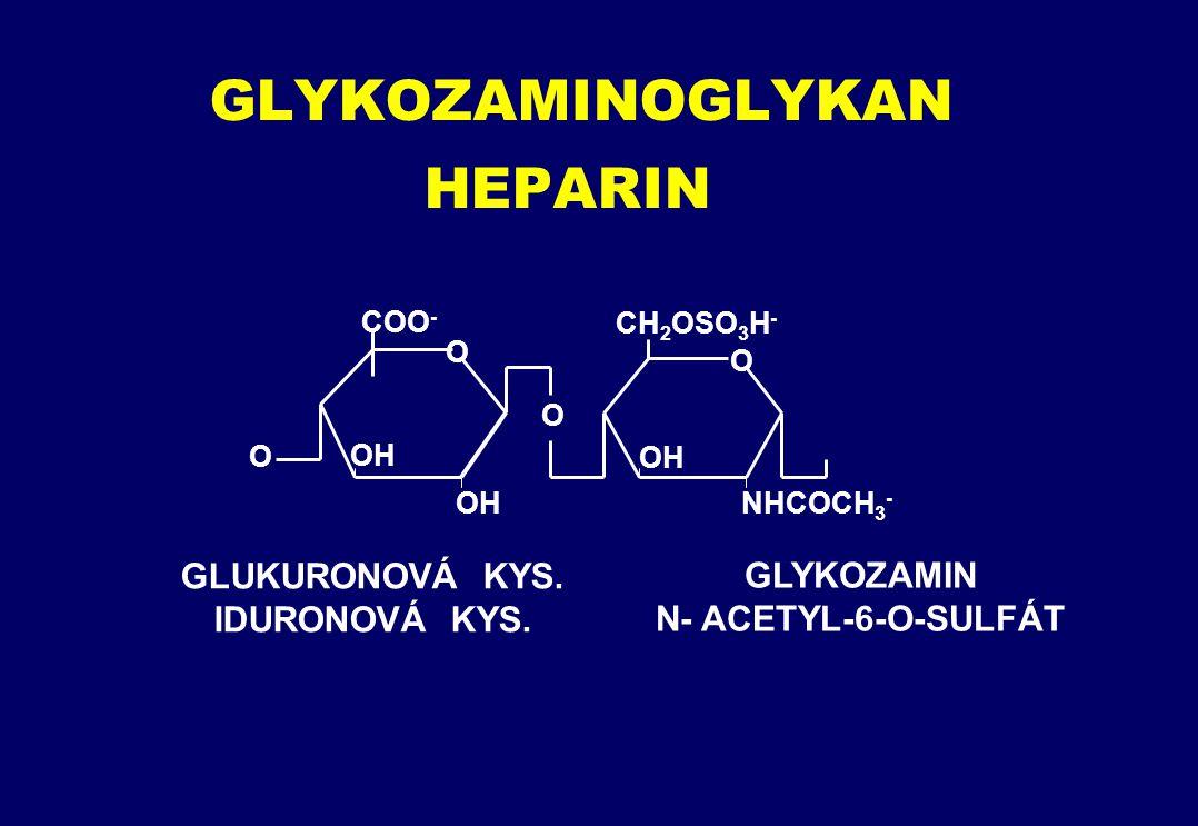 GLYKOZAMINOGLYKAN HEPARIN O COO - O OH O O CH 2 OSO 3 H - OH NHCOCH 3 - GLUKURONOVÁ KYS.
