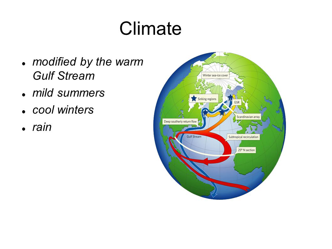 Climate modified by the warm Gulf Stream mild summers cool winters rain