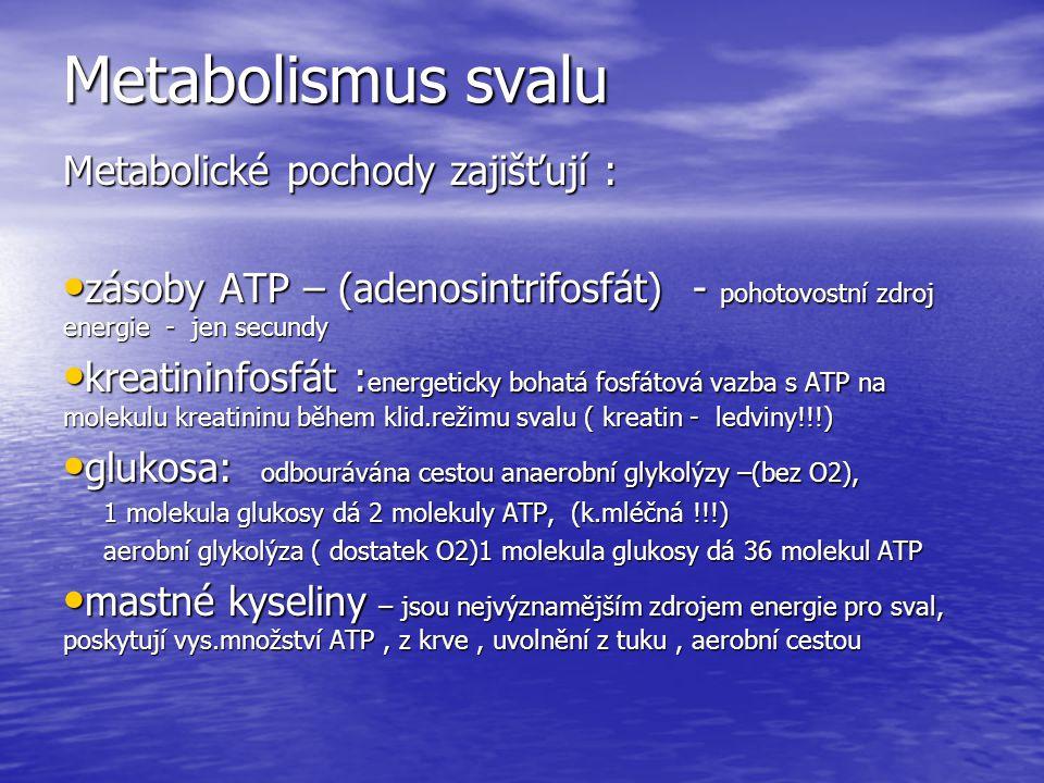 Metabolismus svalu Metabolické pochody zajišťují : zásoby ATP – (adenosintrifosfát) - pohotovostní zdroj energie - jen secundy zásoby ATP – (adenosintrifosfát) - pohotovostní zdroj energie - jen secundy kreatininfosfát : energeticky bohatá fosfátová vazba s ATP na molekulu kreatininu během klid.režimu svalu ( kreatin - ledviny!!!) kreatininfosfát : energeticky bohatá fosfátová vazba s ATP na molekulu kreatininu během klid.režimu svalu ( kreatin - ledviny!!!) glukosa: odbourávána cestou anaerobní glykolýzy –(bez O2), glukosa: odbourávána cestou anaerobní glykolýzy –(bez O2), 1 molekula glukosy dá 2 molekuly ATP, (k.mléčná !!!) 1 molekula glukosy dá 2 molekuly ATP, (k.mléčná !!!) aerobní glykolýza ( dostatek O2)1 molekula glukosy dá 36 molekul ATP aerobní glykolýza ( dostatek O2)1 molekula glukosy dá 36 molekul ATP mastné kyseliny – jsou nejvýznamějším zdrojem energie pro sval, poskytují vys.množství ATP, z krve, uvolnění z tuku, aerobní cestou mastné kyseliny – jsou nejvýznamějším zdrojem energie pro sval, poskytují vys.množství ATP, z krve, uvolnění z tuku, aerobní cestou