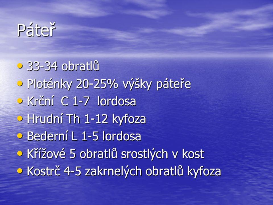 Páteř 33-34 obratlů 33-34 obratlů Ploténky 20-25% výšky páteře Ploténky 20-25% výšky páteře Krční C 1-7 lordosa Krční C 1-7 lordosa Hrudní Th 1-12 kyf