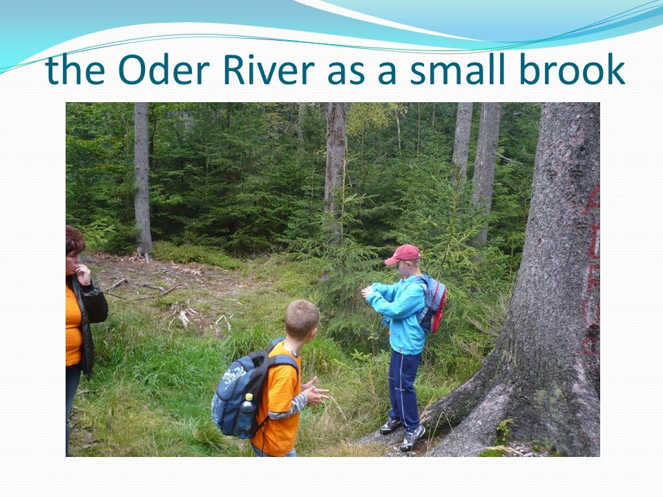 the Oder River as a small brook