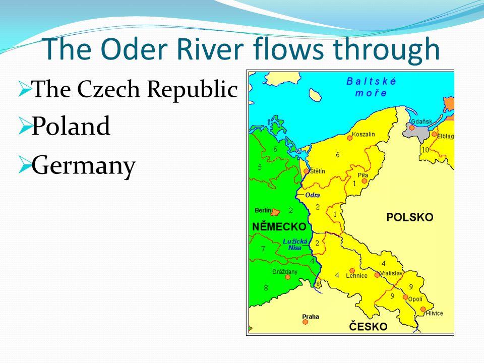 It springs in the Oder Hills  under the Fidla Hill the source of the Oder River http://www.turistik.cz/cz/kraje/olomoucky- kraj/okres-olomouc/libava/pramen- odry/galerie/