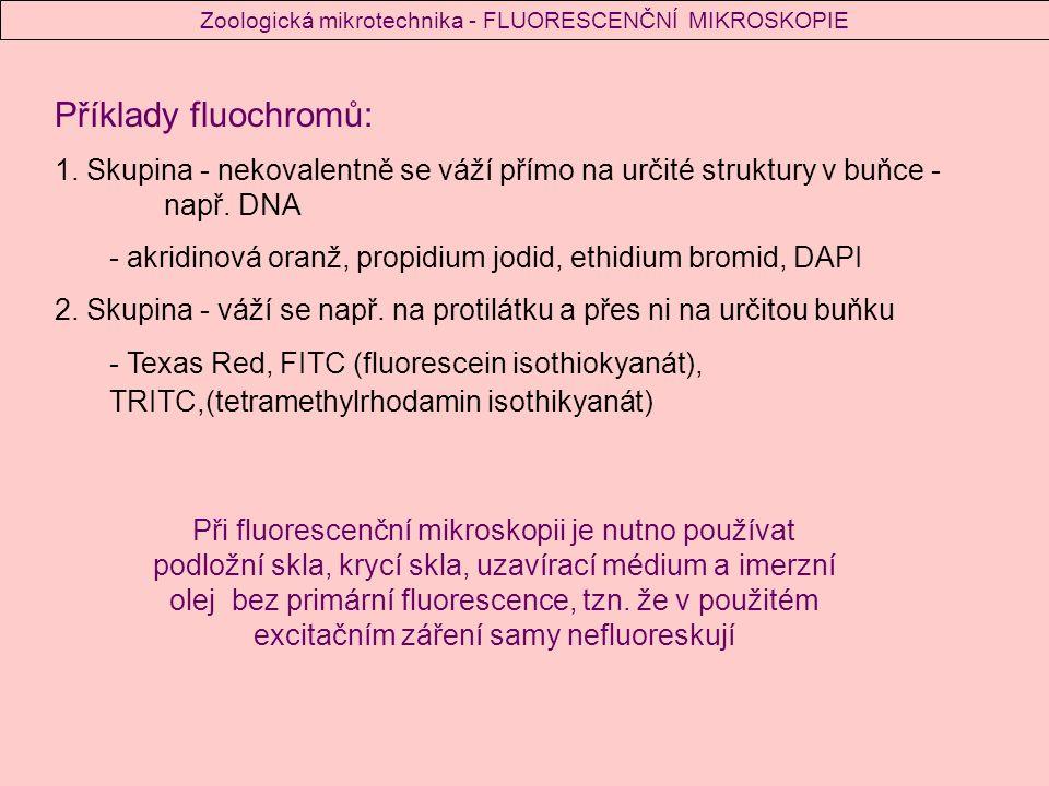 Příklady fluochromů: 1.Skupina - nekovalentně se váží přímo na určité struktury v buňce - např.