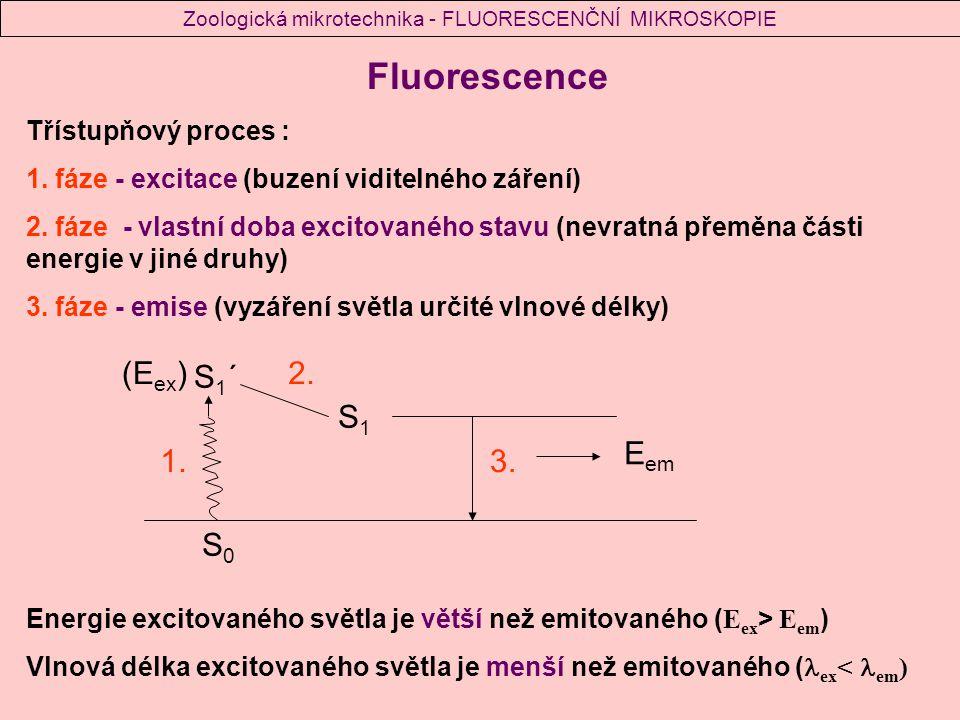 Fluorescence Třístupňový proces : 1.fáze - excitace (buzení viditelného záření) 2.