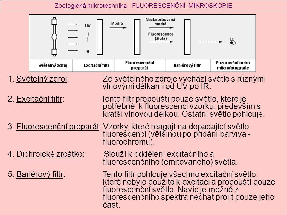 Kostka s filtry a zrcátkem Schéma principu fluorescenční mikroskopie 1.