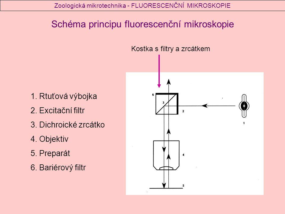 Světelný zdroj: - musí emitovat dostatečně intenzivní světlo o blízkých ultrafialových vlnových délek 1.