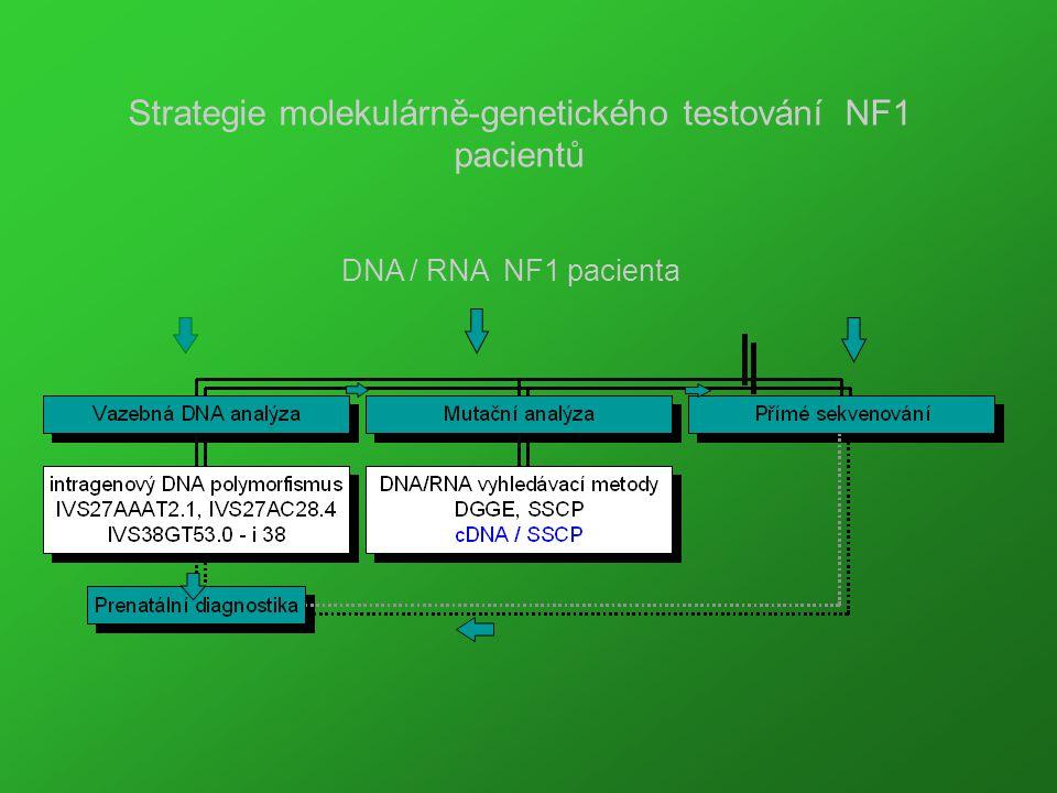 Strategie molekulárně-genetického testování NF1 pacientů DNA / RNA NF1 pacienta