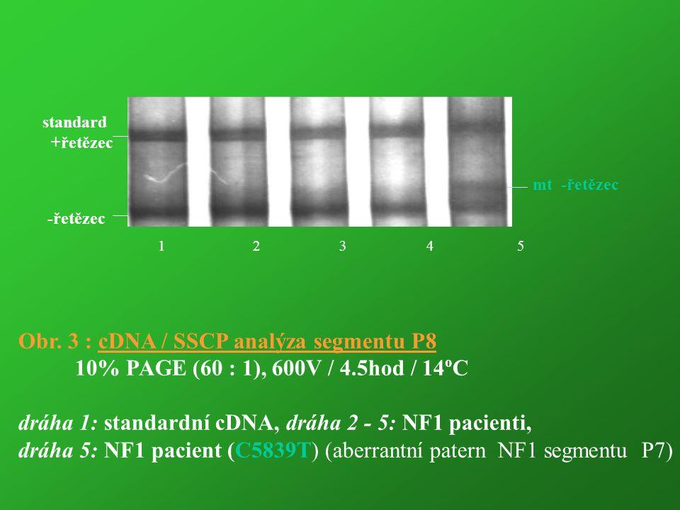 1 2 3 4 5 -řetězec standard +řetězec mt -řetězec Obr. 3 : cDNA / SSCP analýza segmentu P8 10% PAGE (60 : 1), 600V / 4.5hod / 14 o C dráha 1: standardn