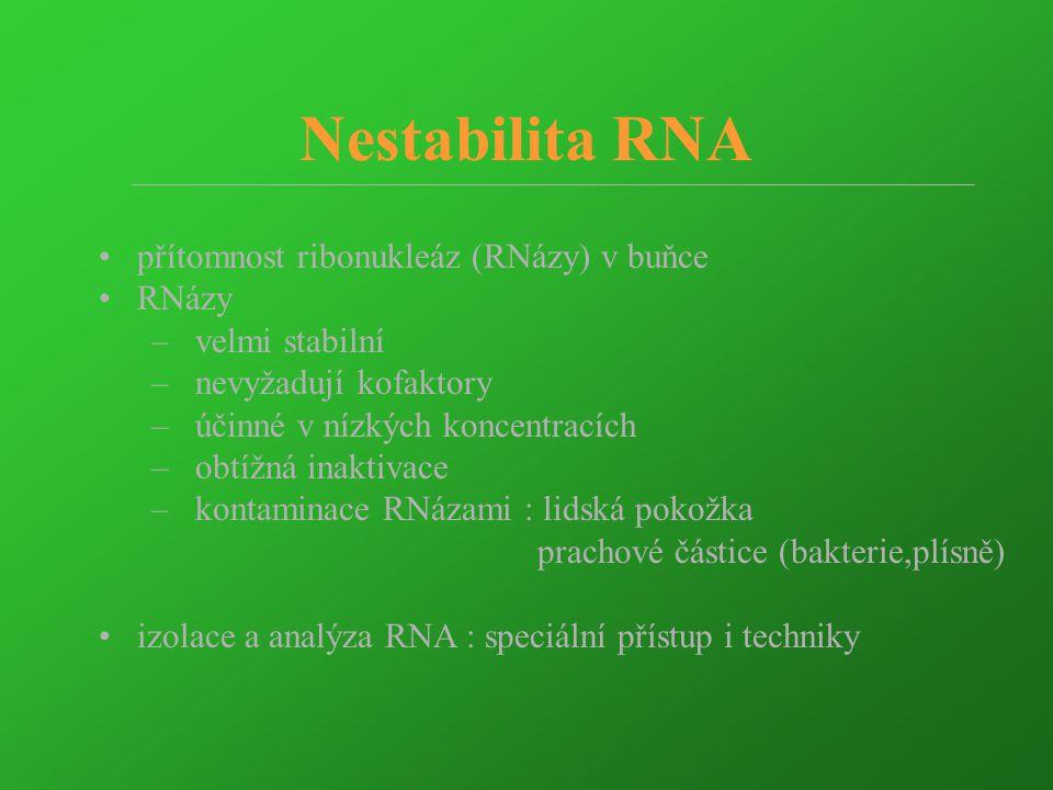Citlivost detekce TH mRNA - PAGE  MG TH 299bp 10 -7 10 -6 10 -5 10 -4 10 -3 M