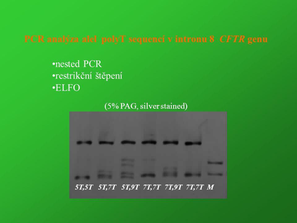 PCR analýza alel polyT sequencí v intronu 8 CFTR genu (5% PAG, silver stained) 5T,5T 5T,7T 5T,9T 7T,7T 7T,9T 7T,7T M nested PCR restrikční štěpení ELF