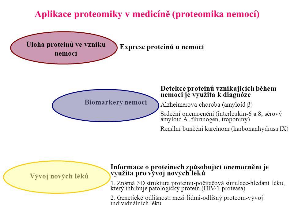 Aplikace proteomiky v medicíně (proteomika nemocí) Vývoj nových léků Biomarkery nemocí Exprese proteinů u nemocí Úloha proteinů ve vzniku nemocí Detekce proteinů vznikajících během nemoci je využita k diagnóze Alzheimerova choroba (amyloid β) Srdeční onemocnění (interleukin-6 a 8, sérový amyloid A, fibrinogen, troponiny) Renální buněční karcinom (karbonanhydrasa IX) Informace o proteinech způsobující onemocnění je využita pro vývoj nových léků 1.