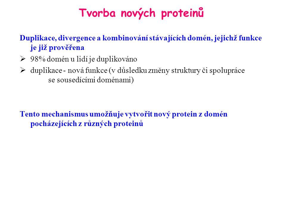 Co je to proteomika.