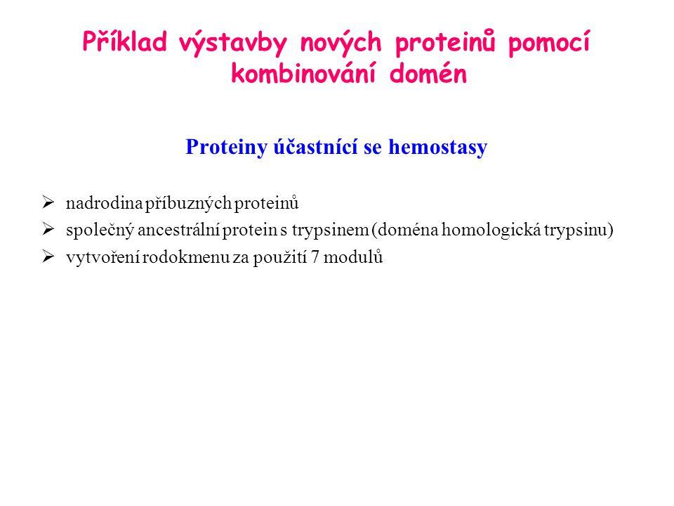 Příklad výstavby nových proteinů pomocí kombinování domén Proteiny účastnící se hemostasy  nadrodina příbuzných proteinů  společný ancestrální protein s trypsinem (doména homologická trypsinu)  vytvoření rodokmenu za použití 7 modulů