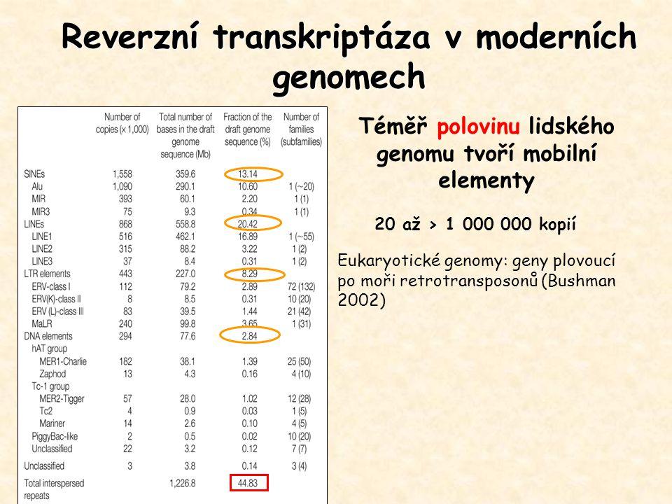 Reverzní transkriptáza v moderních genomech Téměř polovinu lidského genomu tvoří mobilní elementy 20 až > 1 000 000 kopií Eukaryotické genomy: geny pl