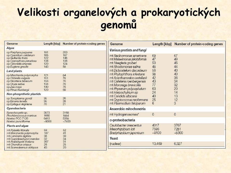 Velikosti organelových a prokaryotických genomů