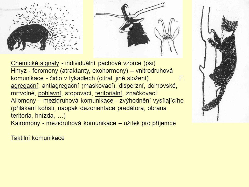 Chemické signály - individuální pachové vzorce (psi) Hmyz - feromony (atraktanty, exohormony) – vnitrodruhová komunikace - čidlo v tykadlech (citral,