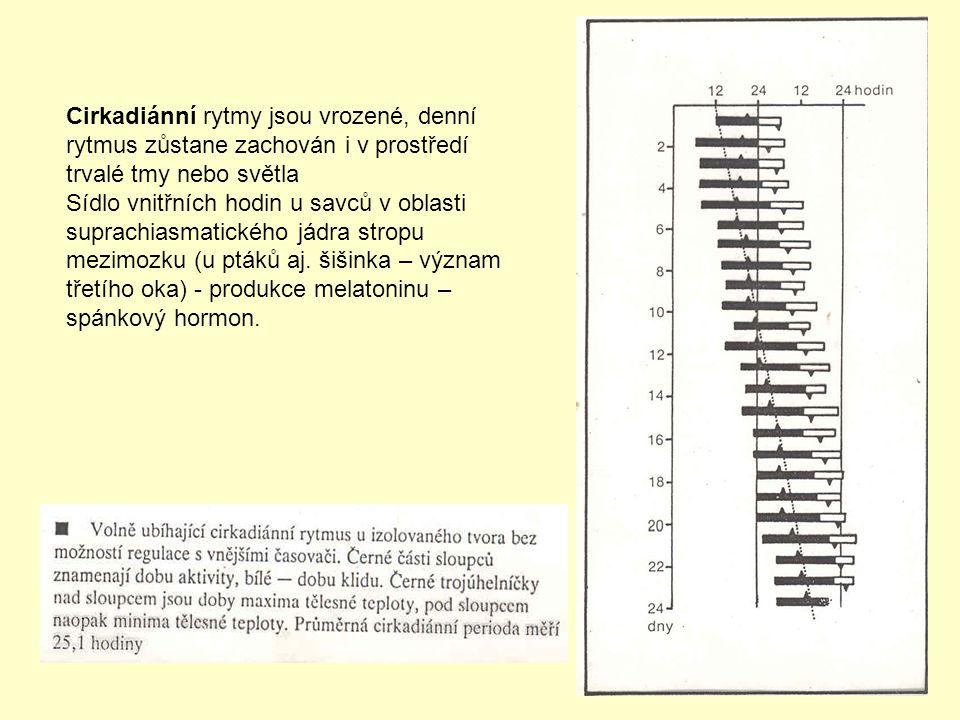 Chemické signály - individuální pachové vzorce (psi) Hmyz - feromony (atraktanty, exohormony) – vnitrodruhová komunikace - čidlo v tykadlech (citral, jiné složení).