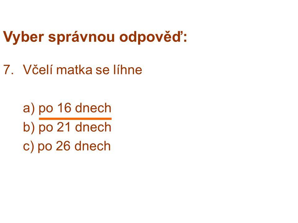 Vyber správnou odpověď: 7.Včelí matka se líhne a) po 16 dnech b) po 21 dnech c) po 26 dnech